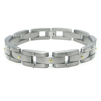 Titanium Men's Link Bracelet w/ Silver and Gold Screw Accents